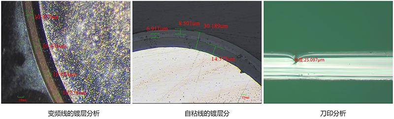 金相显微镜检测效果图